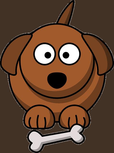 cão com osso