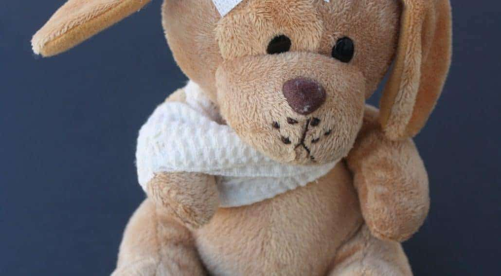 Cão de pelúcia machucado - trombocitopenia imunomediada