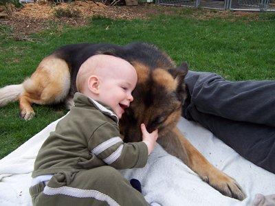 bebê abraçando cão