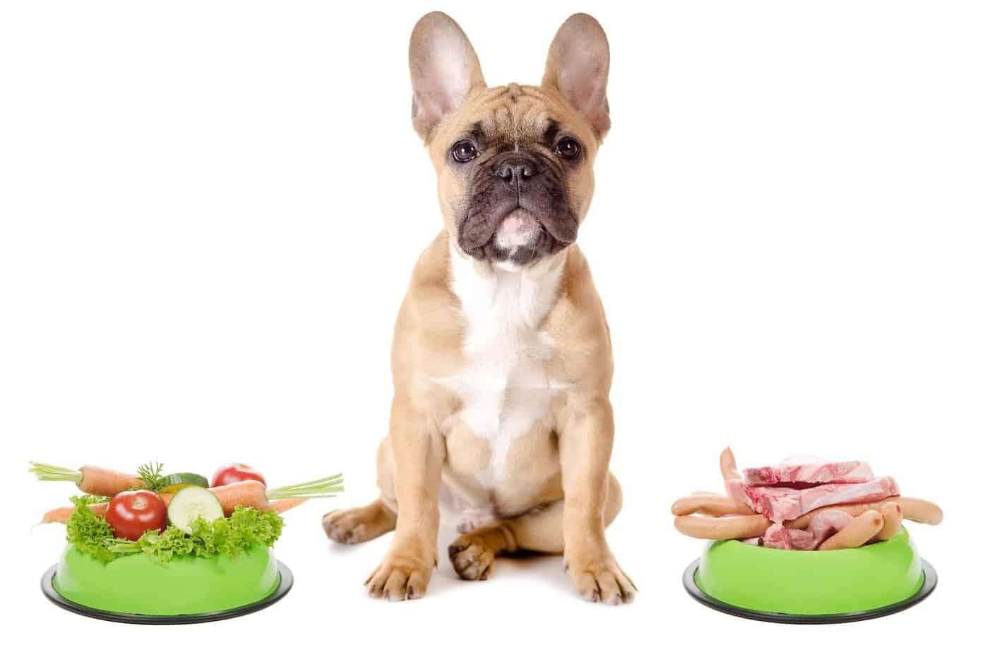 Imagem: Doggy Foods